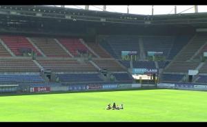 stade11