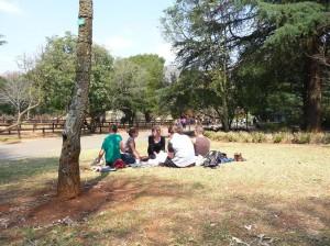 picniczoo
